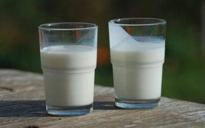 CASO CLÍNICO: Lactante de 40 días con urticaria post ingesta de fórmula láctea