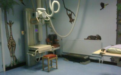 """Taller de aproximación al diagnóstico radiológico en pediatría: """"lo que el pediatra debe saber"""""""