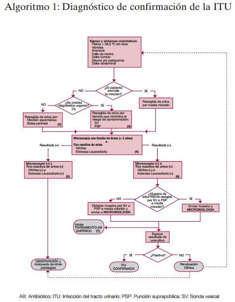 algoritmo de confirmacion de ITU