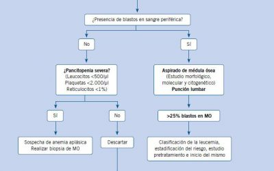 Algoritmo de diagnóstico de leucemia en pediatría de Atención Primaria