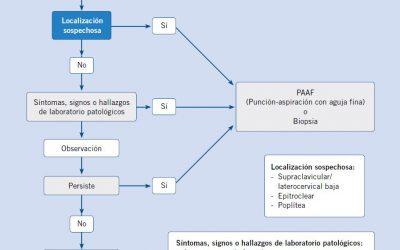 Algoritmo de verificación ante sospecha de adenopatía