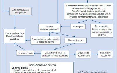Manejo del paciente pediátrico con adenopatías en Atención Primaria