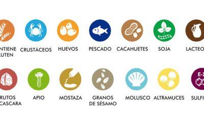 Introducción precoz de alimentos sólidos, prevención de alergias alimentarias e implicaciones para la lactancia materna