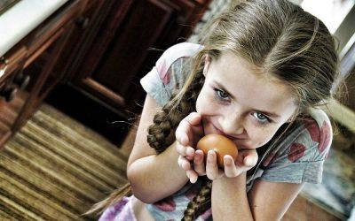 Revisión del manejo de las infecciones por Salmonella no typhi en niños