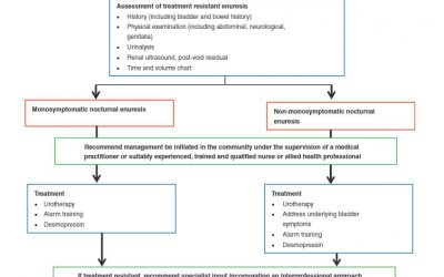 Manejo de la enuresis resistente a tratamiento farmacológico