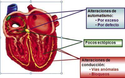 Casos clínicos cardiológicos en adolescentes