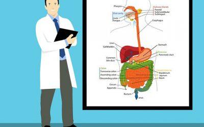 La Inteligencia Artificial en la gastroenterología del futuro