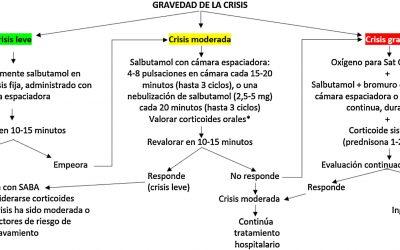 Consenso de la red española de grupos de trabajo sobre asma en pediatría (REGAP)