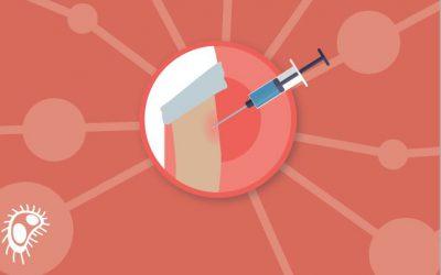 Respuestas del Curso de Avances en vacunas de la SEPEAP – Enfermedad Meningocócica