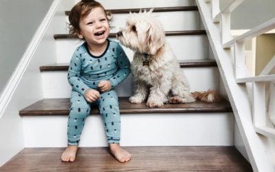 Normas con las mascotas