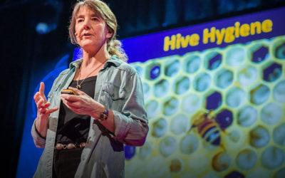 TedTalks: un novedoso formato de experiencias contadas por sus protagonistas